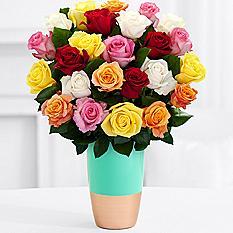 rainbow roses b